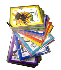 Phonic All Star Flashcards level 1
